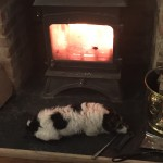 Keeping warm by the woodburner